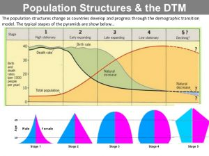 what are the four stages of demographic transition